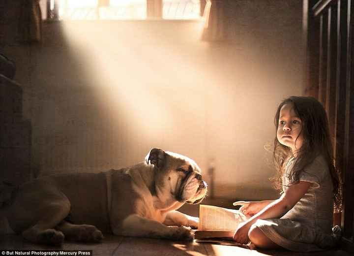 dog lover - © But Natural Photography / Mercury Press - ShareChat