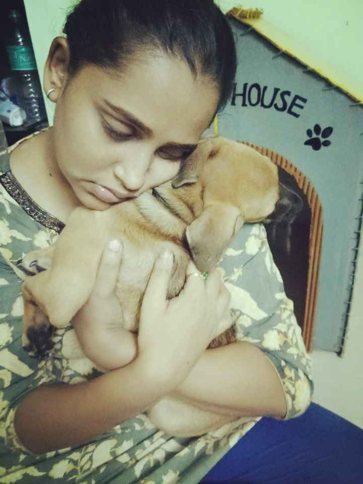 dog lovers - HOUSE - ShareChat