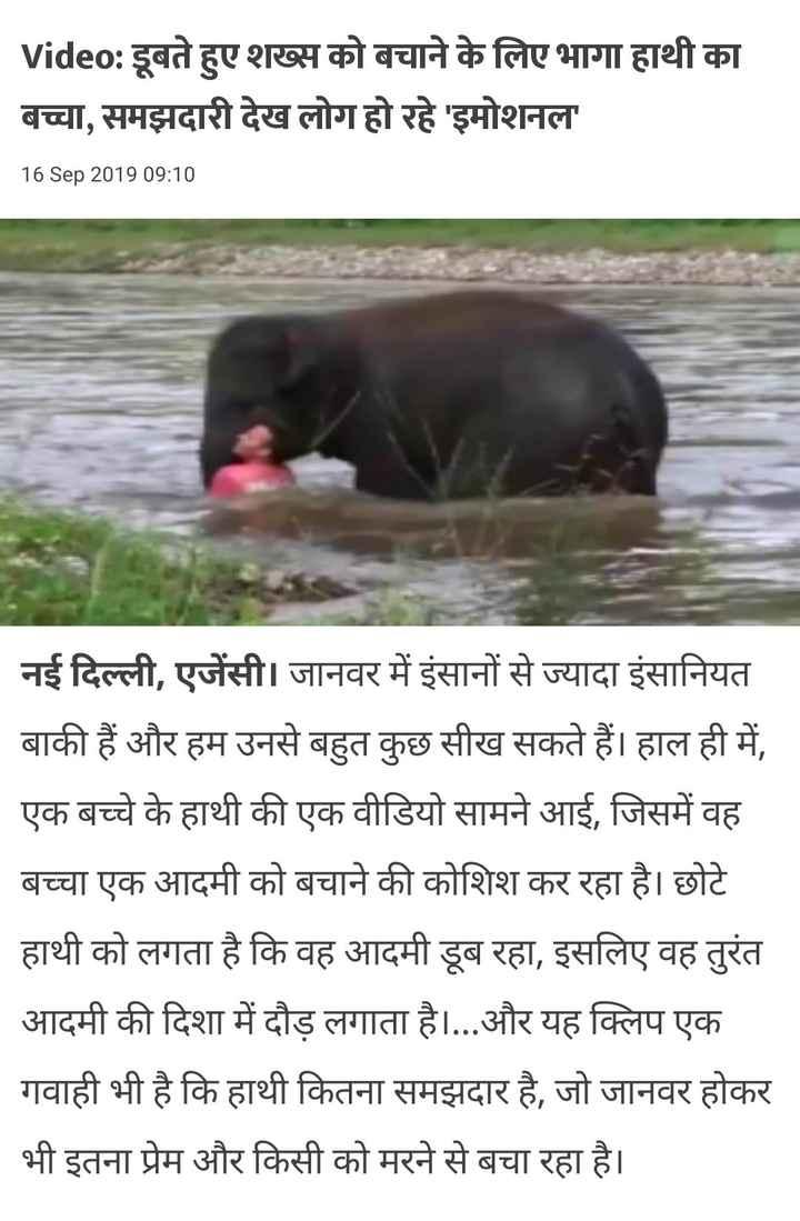 doosro ki help - Video : डूबते हुए शख्स को बचाने के लिए भागा हाथी का बच्चा , समझदारी देख लोग हो रहे ' इमोशनल ' 16 Sep 2019 09 : 10 नई दिल्ली , एजेंसी । जानवर में इंसानों से ज्यादा इंसानियत बाकी हैं और हम उनसे बहुत कुछ सीख सकते हैं । हाल ही में , एक बच्चे के हाथी की एक वीडियो सामने आई , जिसमें वह बच्चा एक आदमी को बचाने की कोशिश कर रहा है । छोटे हाथी को लगता है कि वह आदमी डूब रहा , इसलिए वह तुरंत आदमी की दिशा में दौड़ लगाता है । . . . और यह क्लिप एक गवाही भी है कि हाथी कितना समझदार है , जो जानवर होकर भी इतना प्रेम और किसी को मरने से बचा रहा है । - ShareChat