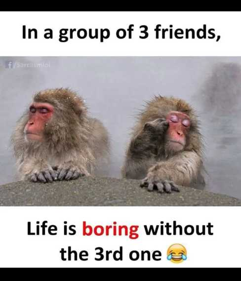 👭dosti yaari👬 - In a group of 3 friends , f / Sarcasmo ! Life is boring without the 3rd one e - ShareChat