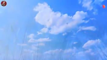 কাশ ফুলের ভিডিও 🌾 - ShareChat