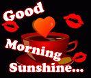 പുലര്കാലം - Good Morning Sunshine . . . - ShareChat
