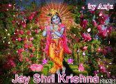 🌸 फ्लावर फोटो 🌸 - by Anju Jay Shri Krishna PicMix - ShareChat