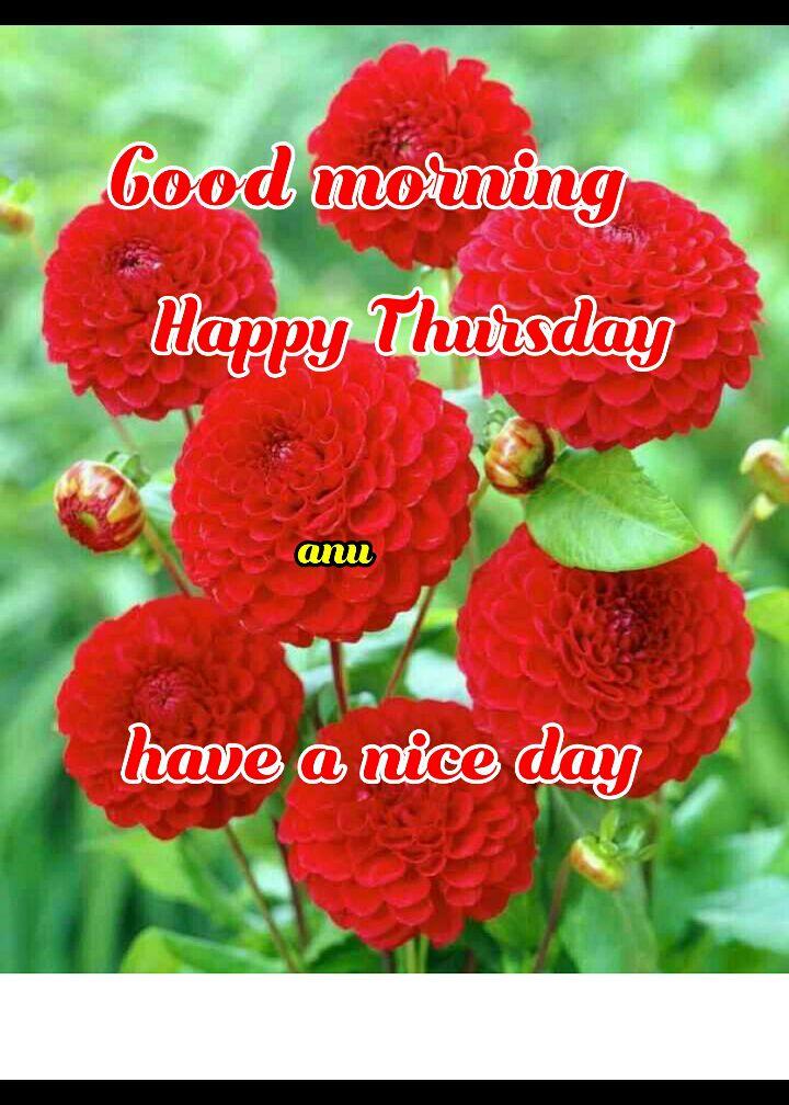 🌞காலை வணக்கம் - Good morning Happy Thursday an have a nice day - ShareChat