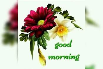 subha sokal - GOOD MORNING Good Morning Buludowo good - ShareChat