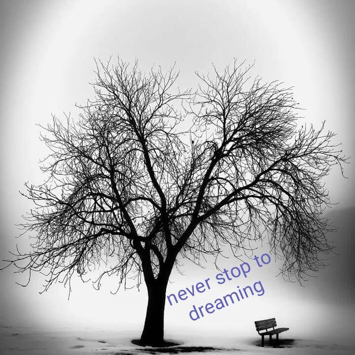 💔 অসফল প্ৰেম - never stop to dreaming - ShareChat