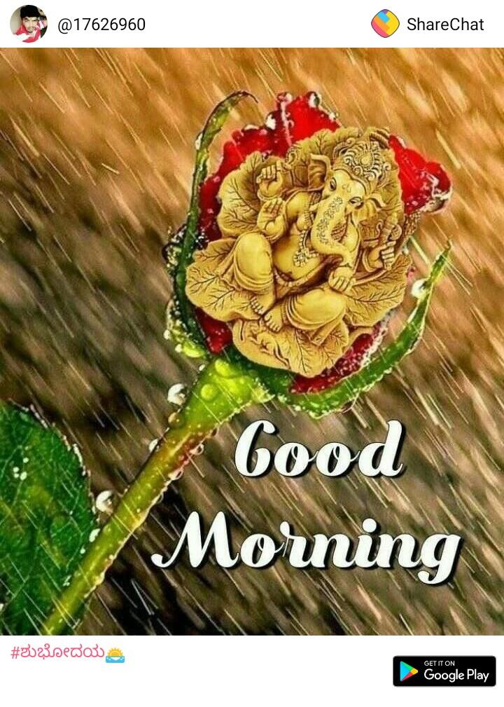 ರಕ್ತದನಮಾಡಿ ಜೀವ ಉಳಿಸಿ - @ 17626960 ShareChat Good Morning # 3023sedou GET IT ON Google Play - ShareChat