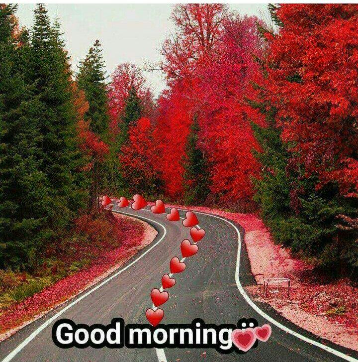 🌞Good Morning🌞 - PS Good morningco - ShareChat