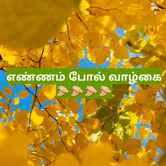 motivational dialogue - எண்ணம் போல் வாழ்கை - ShareChat