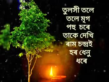 কাতি বিহু - ShareChat