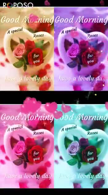 🌞Good Morning🌞 - More RCPOSO su PTI ROPOSO Install now : - ShareChat