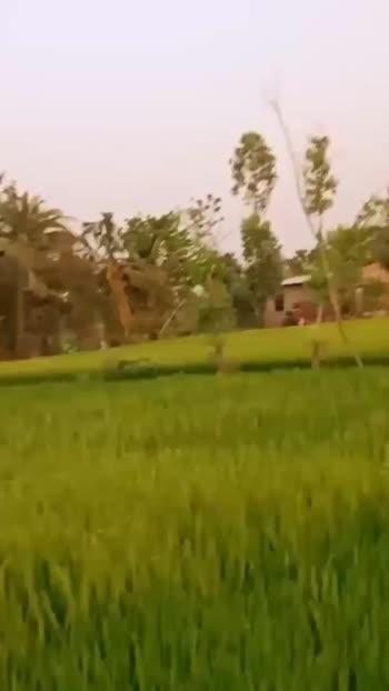 আমার শহর,আমার গ্রাম🏡 - ShareChat