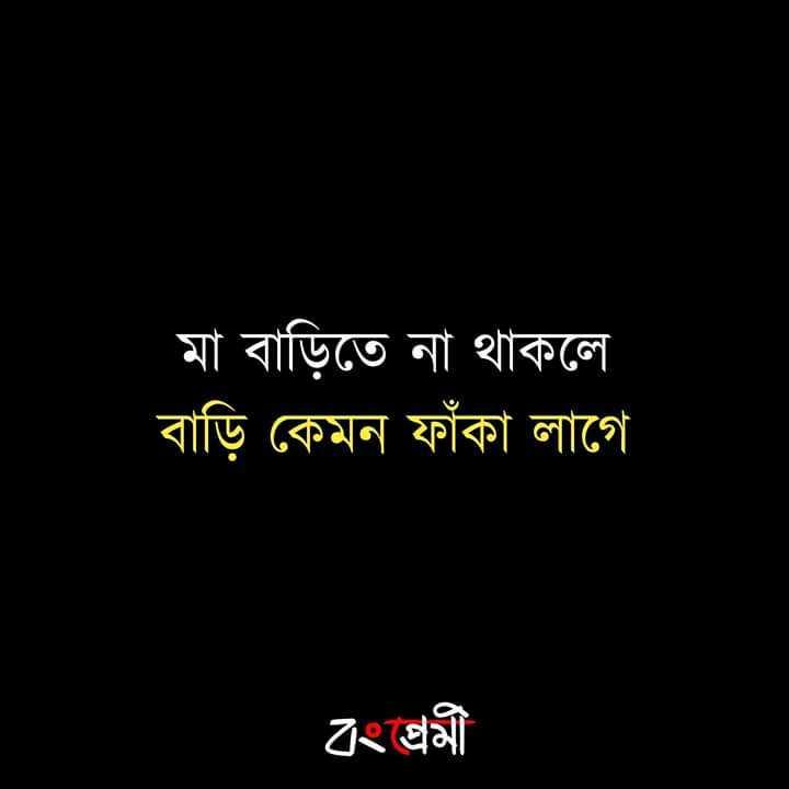 emotional status - মা বাড়িতে না থাকলে বাড়ি কেমন ফাঁকা লাগে বংশ্রমী - ShareChat