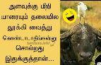 தமிழ் மீம்ஸ் - ShareChat