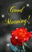 🌄🌞good morning 🌞🌄 - rood Norninq. - ShareChat