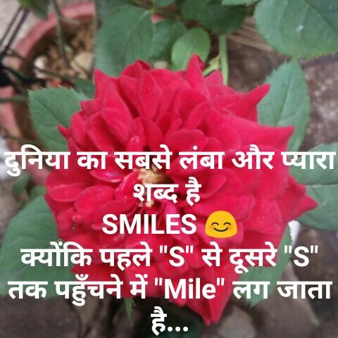 👯 દોસ્તી કોટ્સ - दुनिया का सबसे लंबा और प्यारा शब्द है SMILES क्योंकि पहले S से दूसरे S तक पहुँचने में Mile लग जाता ह . . . - ShareChat