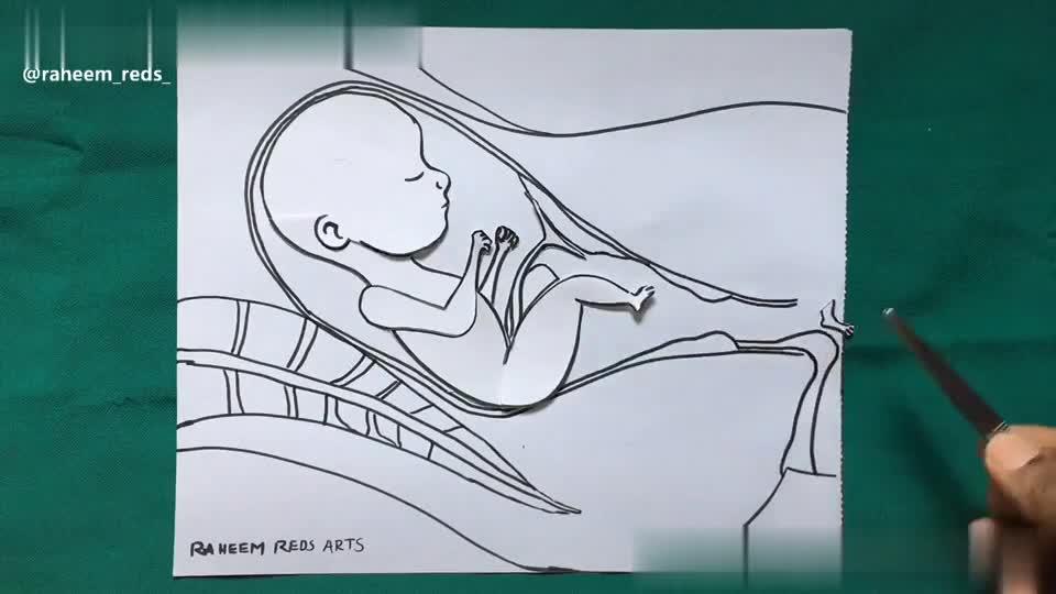 📹मजेदार वीडियो📹 - RAHEEM REDS ARTS @ raheem _ reds RAHEEM REDS ARTS STOP ABORTION ! @ raheem _ reds - ShareChat