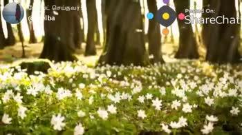 christan song - ShareChat