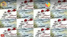 शैडो टाइगर - A TREBA ve May cmedini278 K Posted On : b , ShareChat Nice Day Bhoomi Creation Morning - ShareChat