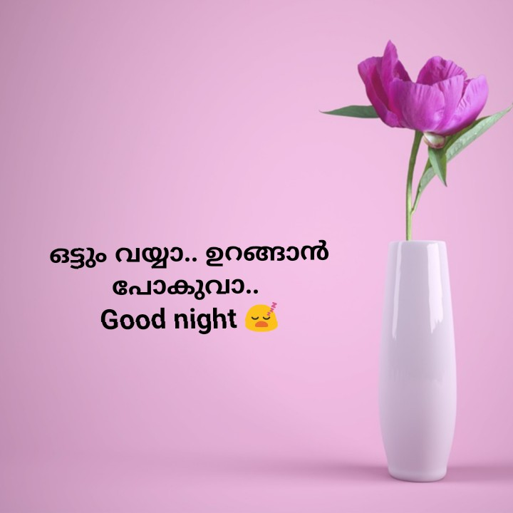 🌃 ഗുഡ് നൈറ്റ് - ഒട്ടും വയ്യാ . . ഉറങ്ങാൻ പോകുവാ . . Good night - ShareChat