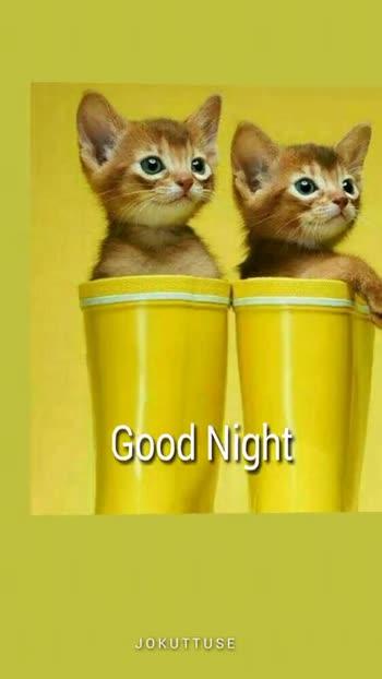 🌃 ഗുഡ് നൈറ്റ് - Good Night JOKUTTUSE Good Night JOKUTTUSE - ShareChat