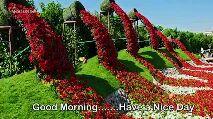 good morning - MOODRISER Good Morning . . . . . . . Have a Nice Day - ShareChat