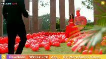 ଶେୟରଚେଟ୍ ଗଟ ଟେଲେଣ୍ଟ - THE SILENT LOVE 8 Download Welike Lite App Get More Status Videos Welike Lite Download Free Whatsapp Status Videos Q Welike Lite - ShareChat