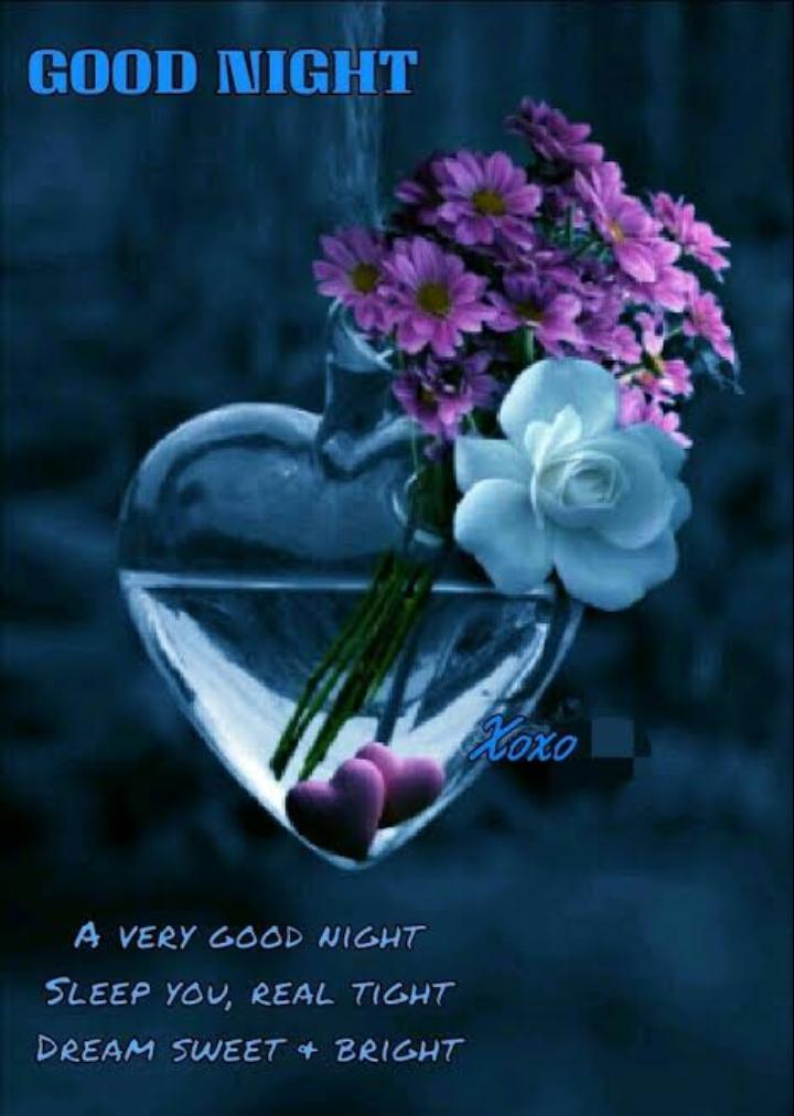 shubha rathri - GOOD NIGHT AO A VERY GOOD NIGHT SLEEP YOU , REAL TIGHT DREAM SWEET + BRIGHT - ShareChat