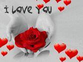 Video स्टेट्स - I Love You - ShareChat