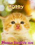 என்ன மன்னிச்சிடு - SORRY Please forgive me - ShareChat