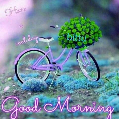 good morning💕💐 - favo Com Good Morning - ShareChat