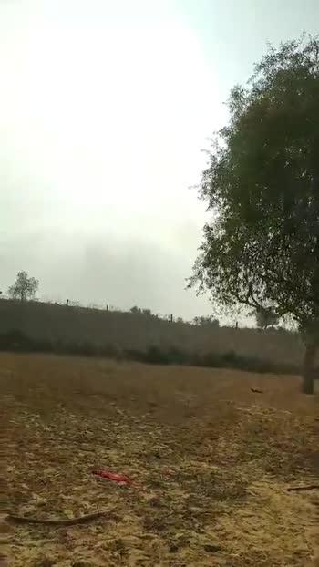☀ जय सूर्यदेव - ShareChat