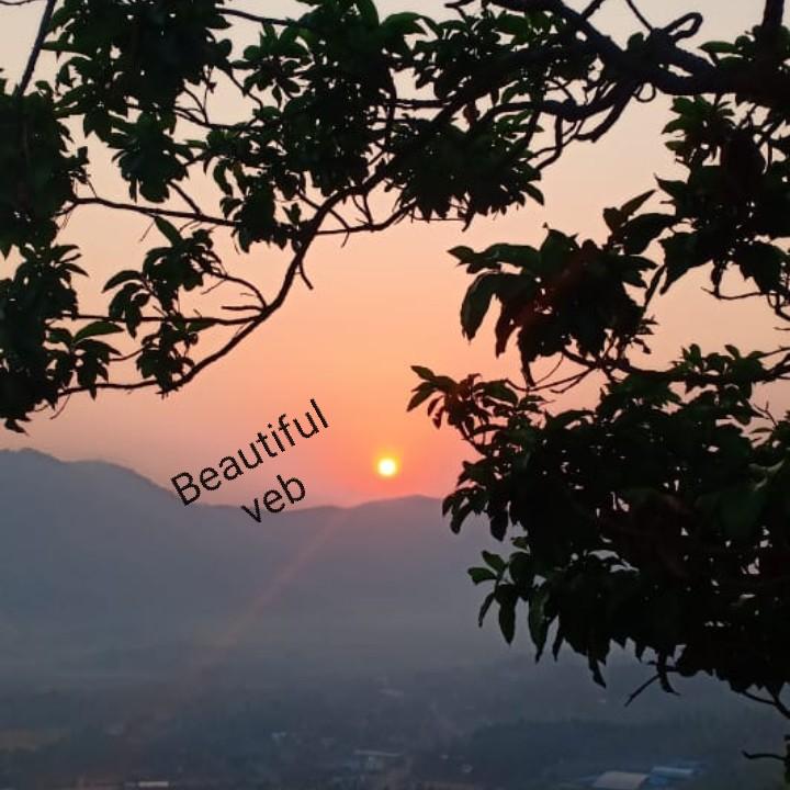 ബെസ്റ്റ് ആർട്ടിസ്റ്റ് - Beautiful veb - ShareChat