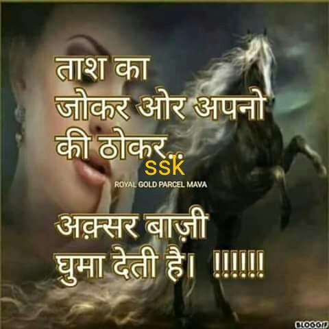 bhuri - ताश का जोकर ओर अपनो की ठोकर SSK ROYAL GOLD PARCEL MAVA अक़्सर बाज़ी घुमा देती है । । । । co6ory - ShareChat