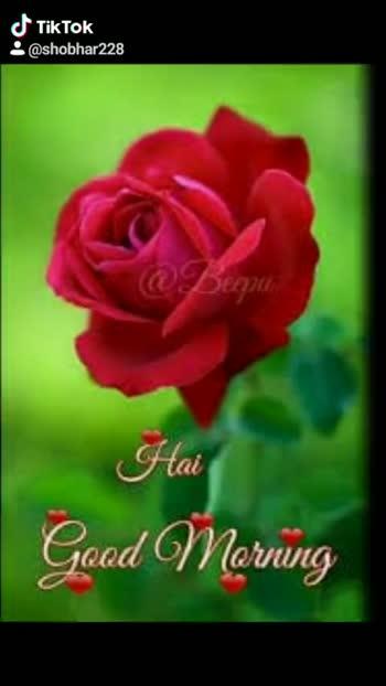 ಶ್ರೀ ಶಿರಡಿ ಸಾಯಿ ಬಾಬಾ - ShareChat