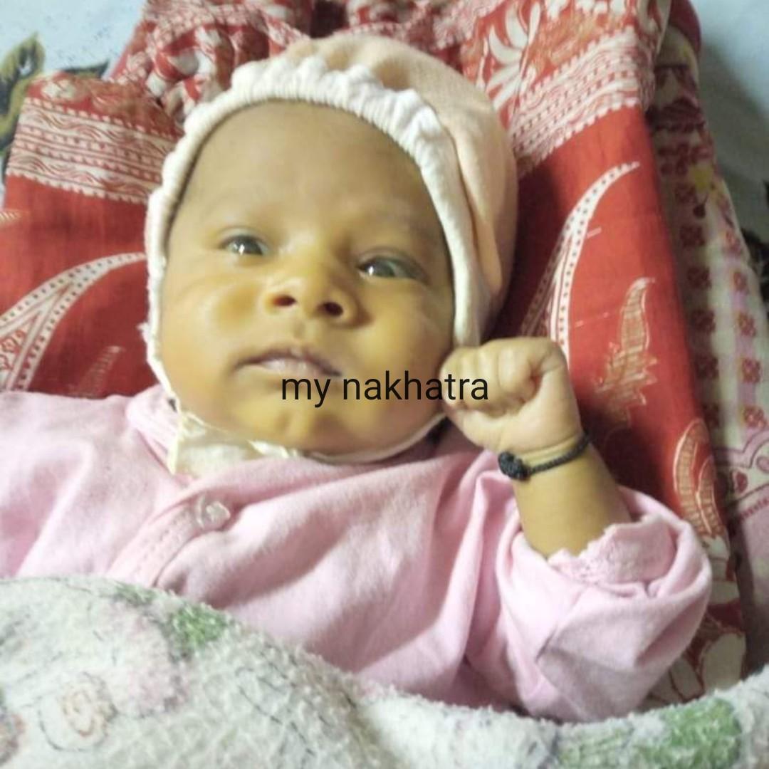 📰 29 માર્ચનાં સમાચાર - my nakhatra - ShareChat