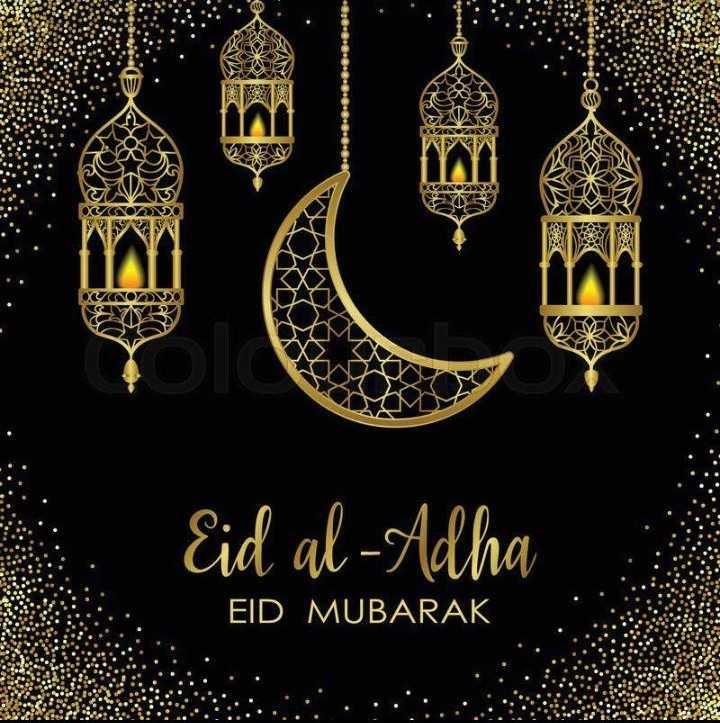 felling happy - NEW A OGNON Eid al - Adha EID MUBARAK - ShareChat