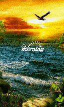 good morning 🌄 - morning maryla - ShareChat