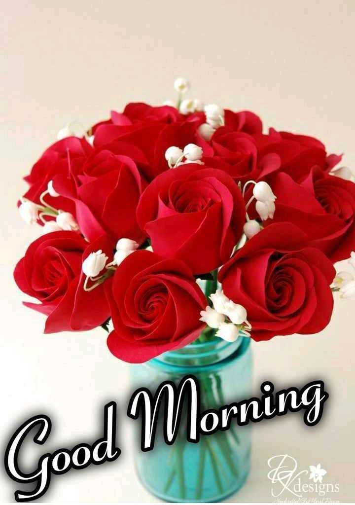 🌹 flower photography - Good Morning Blan - ShareChat