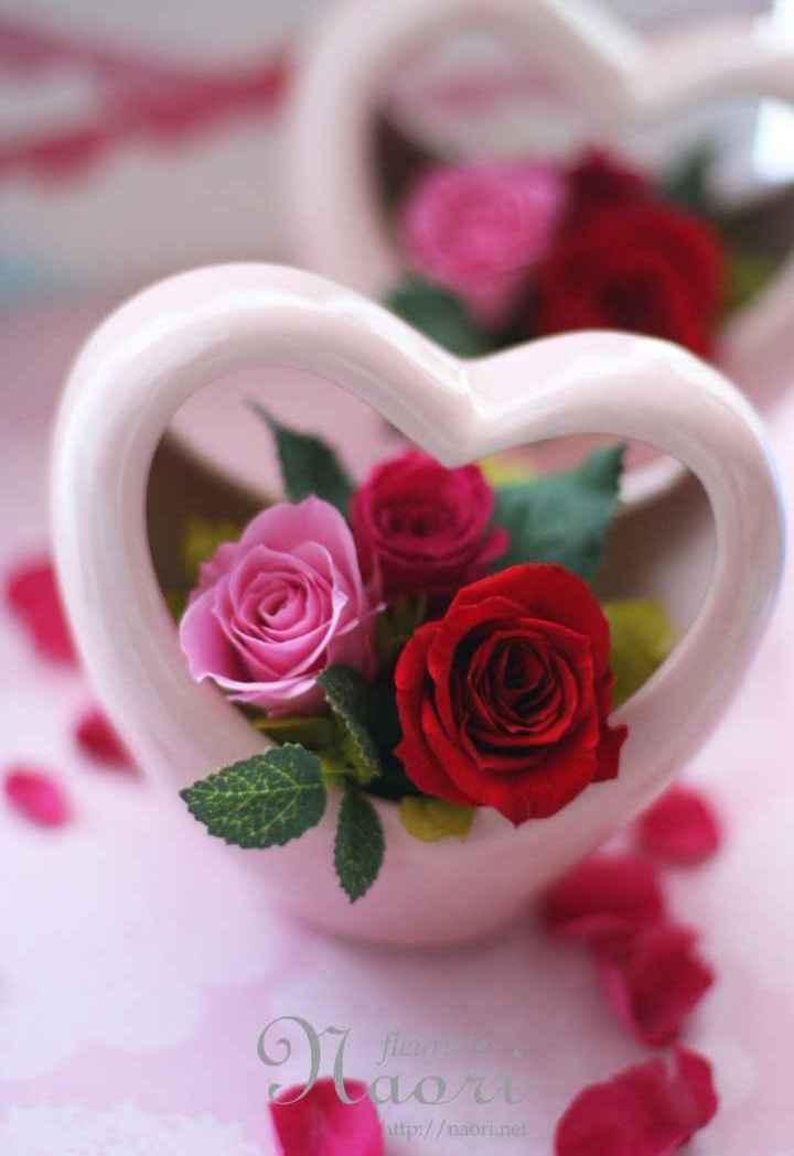🌹 flower photography - ООО http : / / naori nel - ShareChat