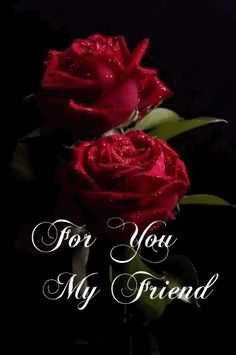 😊friends forever 🤝🤝 - For You My Friend - ShareChat