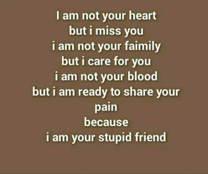 friendship forever........ - I am not your heart but i miss you i am not your faimily but i care for you i am not your blood but i am ready to share your pain because i am your stupid friend - ShareChat