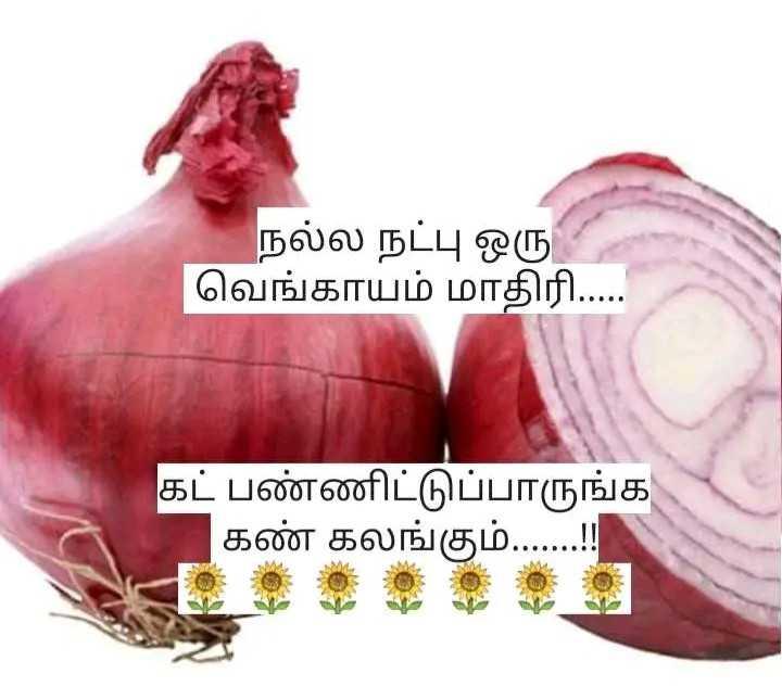 #friendship fr ever - நல்ல நட்பு ஒரு   வெங்காயம் மாதிரி . . . . . கட் பண்ணிட்டுப்பாருங்க கண் கலங்கும் . . . . . . . ! ! - ShareChat