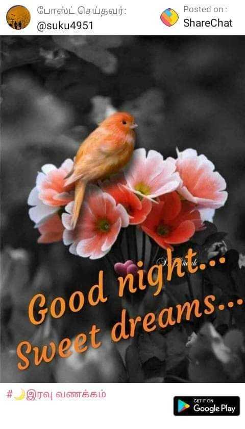 frients - போஸ்ட் செய்தவர் : @ suku4951 Posted on : ShareChat Good night . . Sweet dreams . . . # இரவு வணக்கம் GET IT ON Google Play - ShareChat