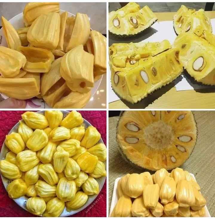 fruits - NOMNOM24 - ShareChat