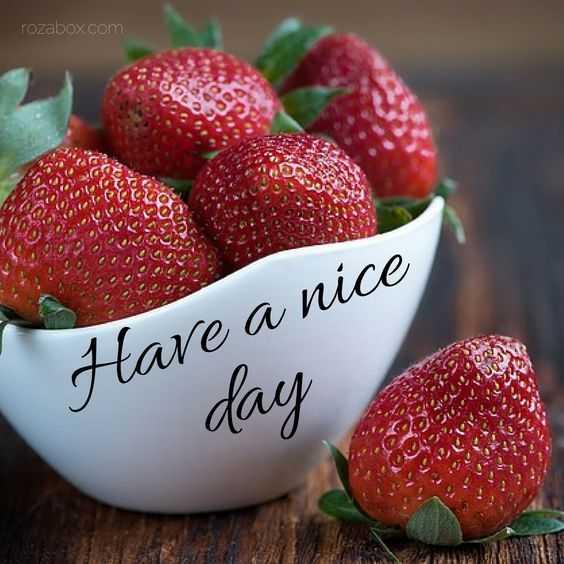 🍋🍌🍅🍓🍒fruits🍒🍓🍅🍌🍋 - rozabox . com Have a nice day - ShareChat