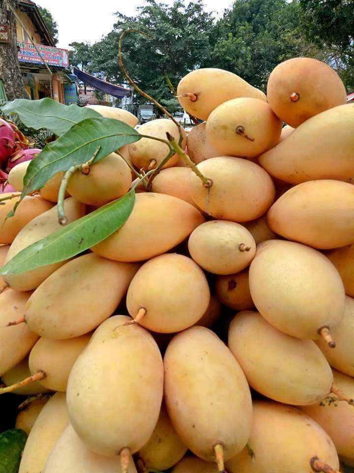 fruits - UE EN HETKI 6 từ 016 7h - Em C . - ShareChat