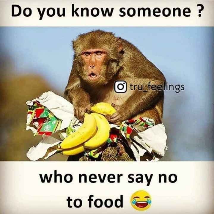 #fun - Do you know someone ? O tru _ feelings who never say no to food - ShareChat