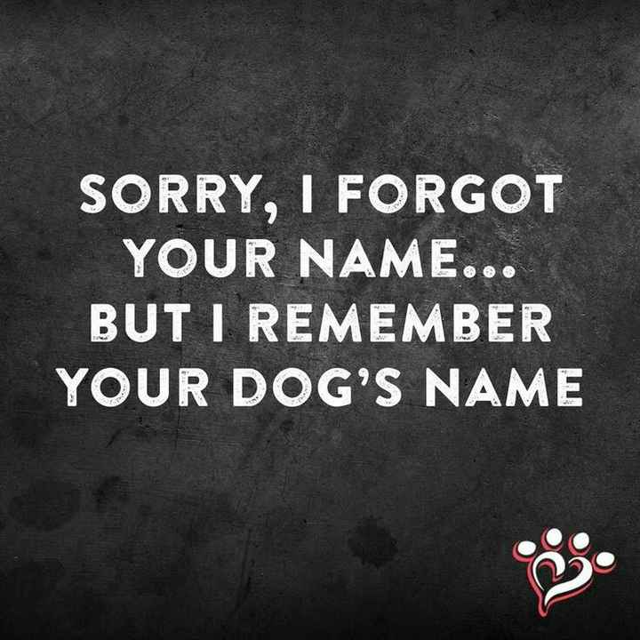 funny - SORRY , I FORGOT YOUR NAME . . . BUT I REMEMBER YOUR DOG ' S NAME - ShareChat