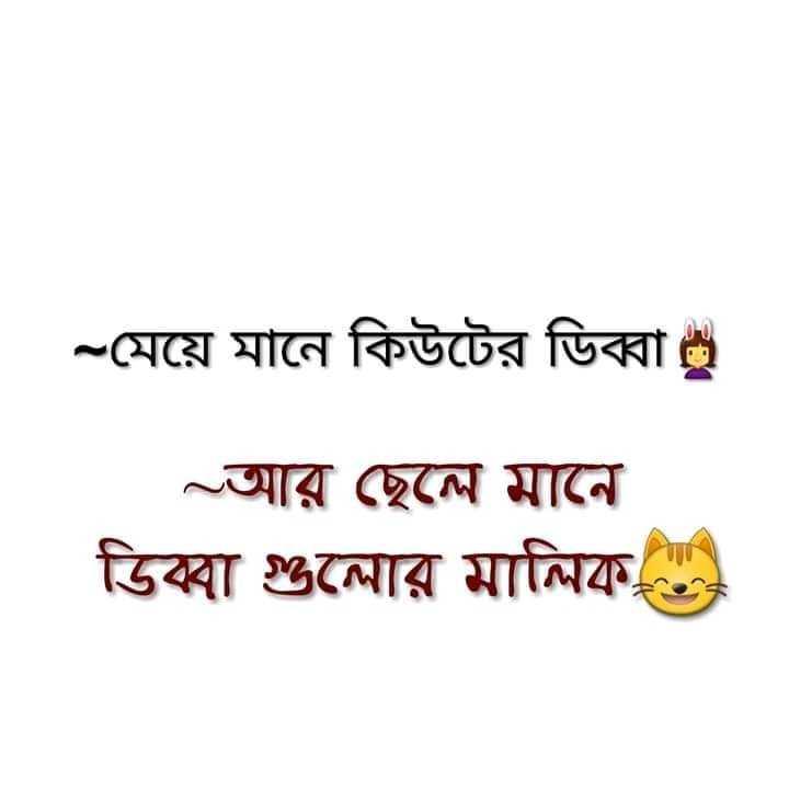 funny 🤣🤣 - - মেয়ে মানে কিউটের ডিব্বা ~ আর ছেলে মানে ডিব্বা গুলাের মালিক - ShareChat